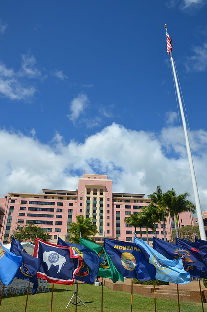 Tripler AMC and state flags