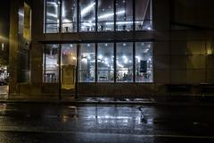 Nights Of Rain And Sorrow