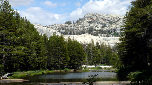 A watershed in the Stanislaus National Forest, located in the Sierra Nevada region of California