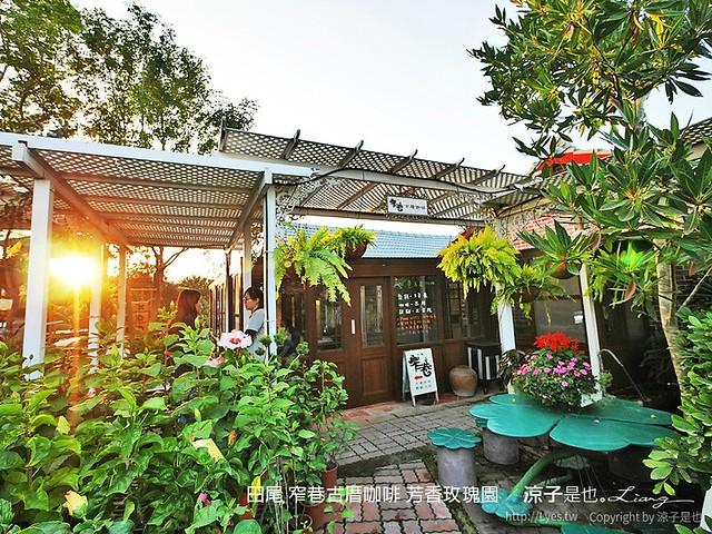 田尾 窄巷古厝咖啡 芳香玫瑰園 8