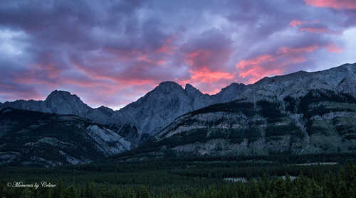 trees sky canada mountains clouds sunrise kananaskis dawn scenery colours scenic alberta pinks