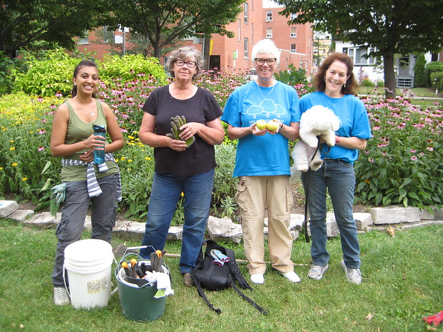 Volunteers at Stewardship August 2015 with windfall apples