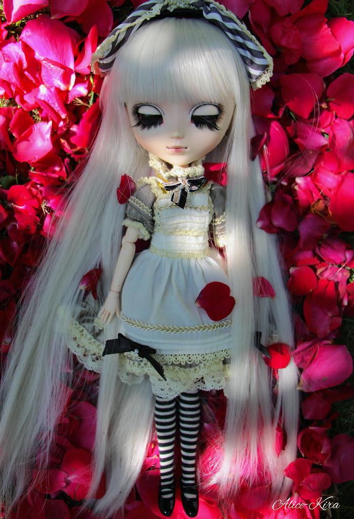 Alice, Pullip Classical Alice Sepia ♥ (News Page 3 !) 18932656294_401c01633d_b