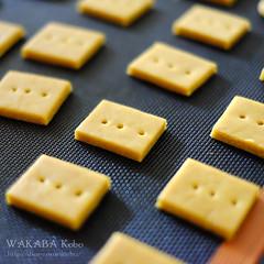 きなこクッキー 20150626-DSCF7570