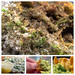 A #Guacamole #recipe - s...