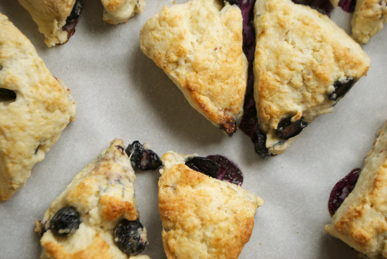These mini blueberry cream scones will be an instant hit at brunch!