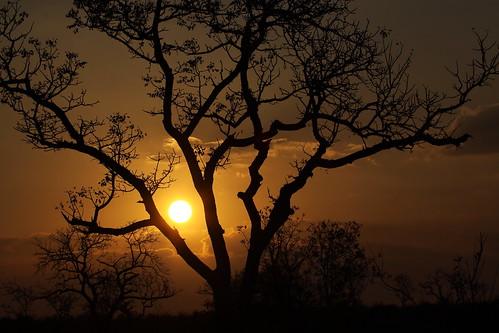 africa sunset game sol sunrise private do south reserve sabi por jul2015
