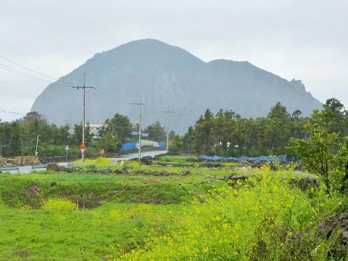 Co-Jejudo-Seogwipo-Sentier Olle 10-Sanbangsan (2)