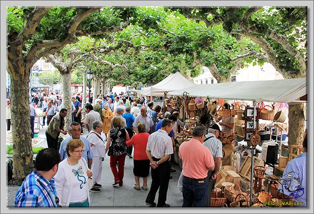 Feria de los ajos en Briviesca (6)
