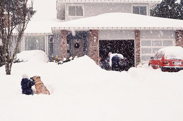 An unforgettable winter. Photo Gareth Evans