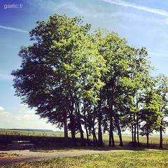 2014-06-19-Autoroute.A4+-012-gaelic.fr-IMG_7407-IMG_5631+ copie