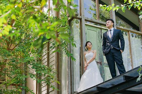 Ngai Xin ~ Pre-wedding Photography