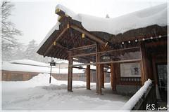 日本北海道.札幌_北海道神宮.31