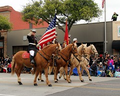 United States Marine Corps Mounted Color Guard