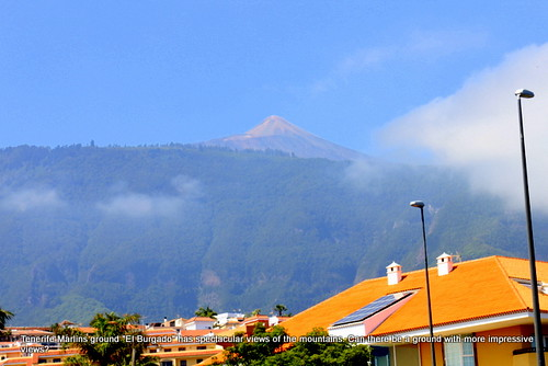 Tenerife Marlins Baseball Team - the ground