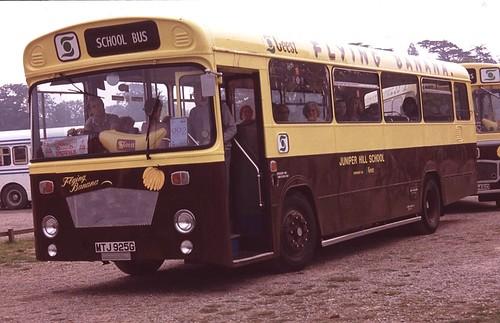 Showbus, Woburn 1982 (2) (c) Philip Slynn