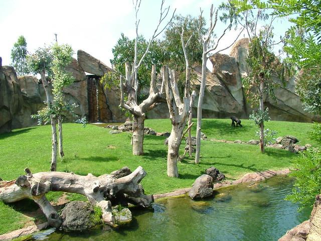 Zoologico de Singapure