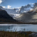 Le glacier de Moiry au petit matin by mgirard011
