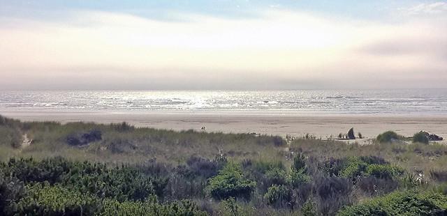 20150627 Beach day 3a