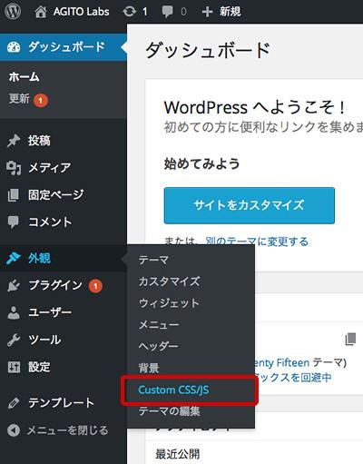 menu of Custom CSS/JS