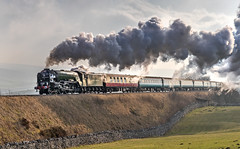 Tornado A1 Class Peppercorn 60163 with a full head of steam at Seaside