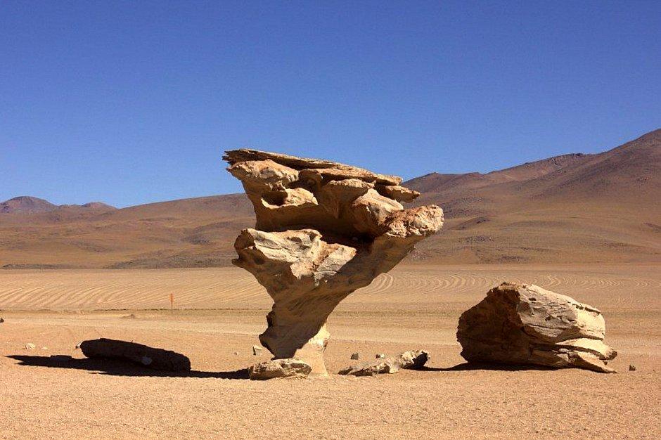 #travelbloggerindia #boliviatourism #southamerica #uyuni #stonetreeuyuni