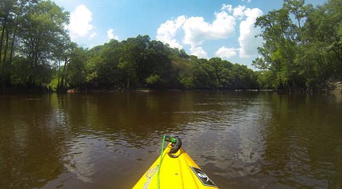 Edisto River Beer Commercial and Rope Swing Float-2
