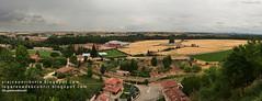 Vega del Arlanza (Lerma, Burgos)