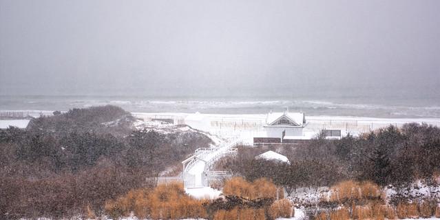 Snowy Day on the Coast