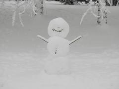 Snowman Snowpocalypse 2017_02