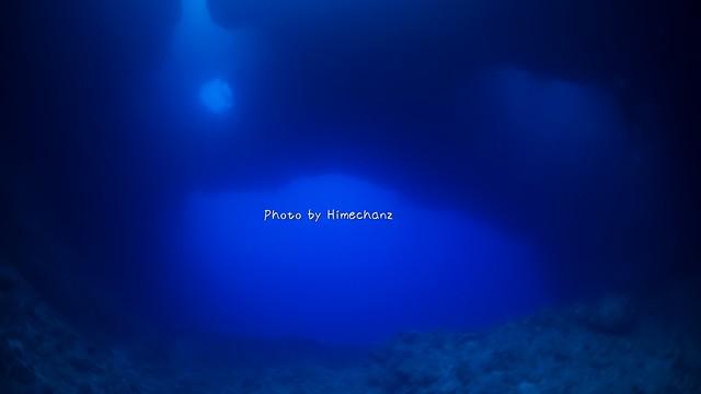 水深20m以深から見ると更に幻想的♪