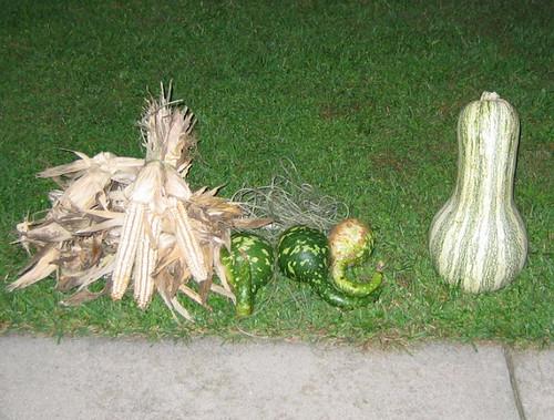 My autumn harvest