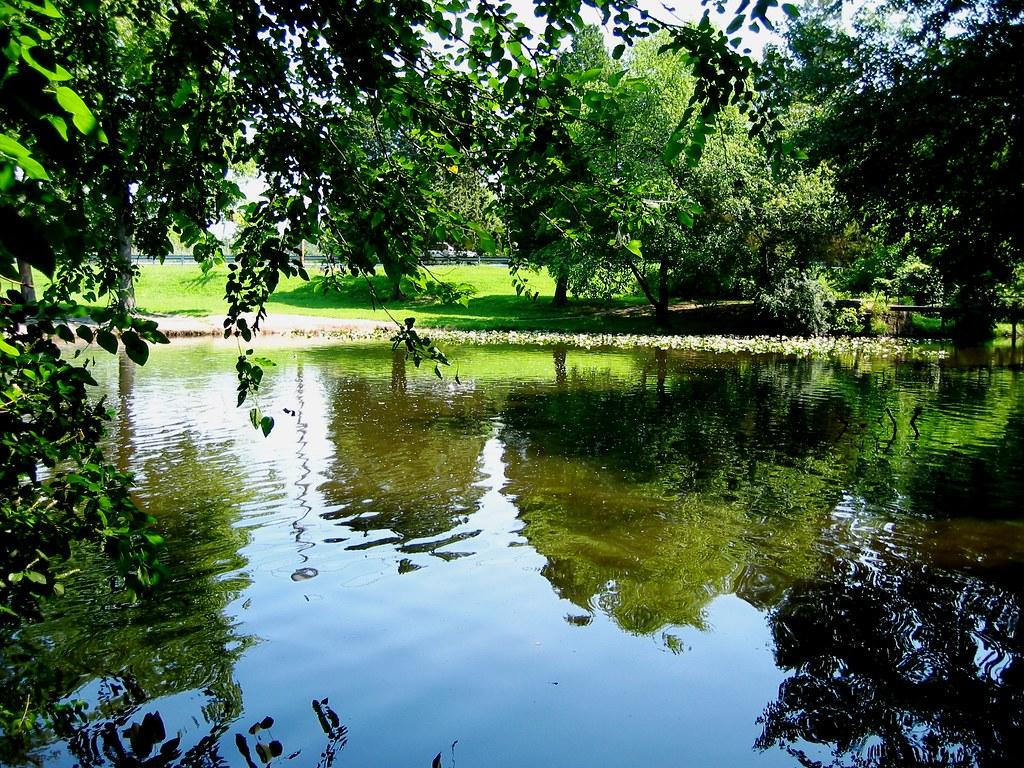Moore's Lake 5