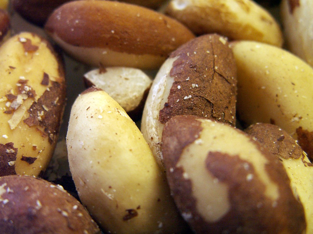 brazil nuts dried, unblanched