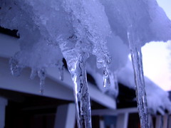 winter, melting, ice, icicle, freezing,