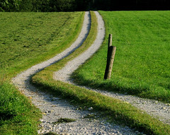 Germany - Curvy Road
