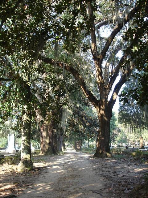 Live Oak Cemetery, Selma AL