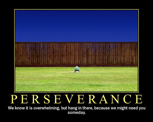 Why Persistence and Perseverance can work against us.