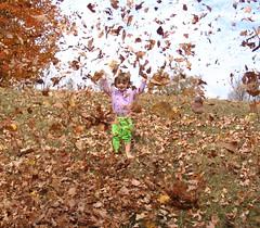 I Rule the Autumn!