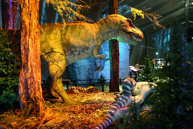 T rex family flickr photo sharing for T rex family
