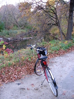 My bike rests at the Bronx River