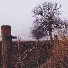 #amselcom #amptcommunity #burnmagazine #clubsocial #discoverireland #Eire #exploreeverything #fotodome #grryo #gang_family #ireland #instagood #ig_worldclub #ireland_gram #latergram #loveireland #liveauthentic #nature #passionpassport #shootermag #shotoni