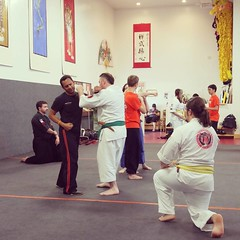 Students from the Budo Shingikan Dojo training with students from the Jin Gang Ban Ruo Wu Guan.
