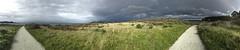 Panorama/Carmel Meadows pathway