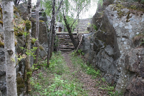 Håøya fort (101)