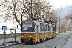 Tatra make tram set of two on Route 41 on the embankment of the River Danube