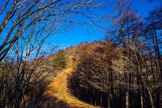 高丸山への登り返しが始まる