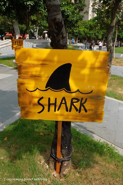 F鯊魚 (1)