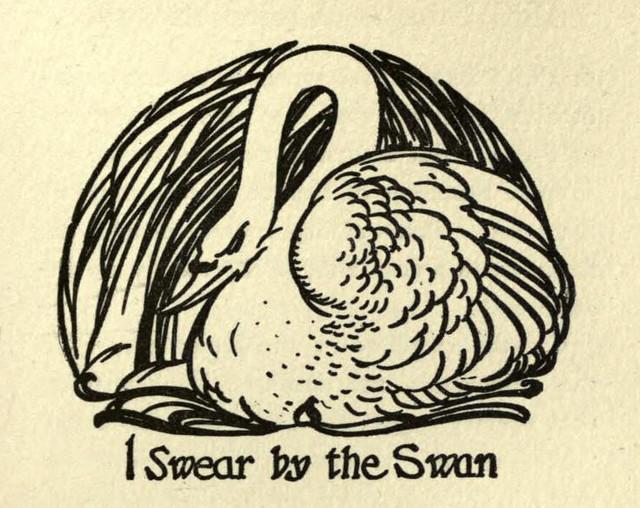 birdgods-swan