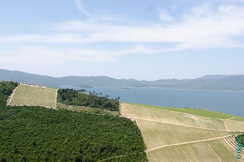 croatia croatie croazia dalmatie raba slivnoravno dubrovačkoneretvanskažupanij dubrovačkoneretvanskažupanija